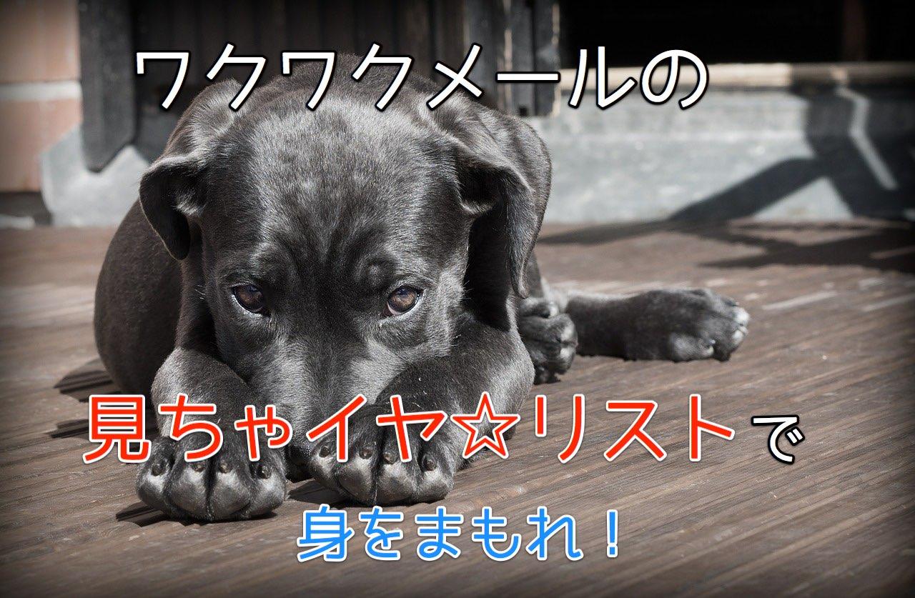 一途さを演出?ワクワクメールの見ちゃイヤ☆リストの有効な活用法!